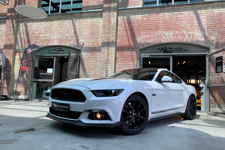 Ford Mustang (GT 5.0 Fastback Black-Shadow*Sportausp.)
